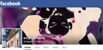 follow 'art place berlin' on facebook